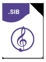 Format Sibelius - Service de transcription de partitions